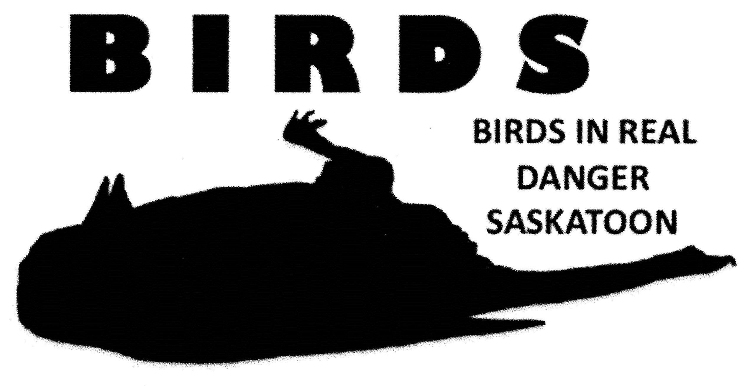 Birds in Real Danger Saskatoon Logo
